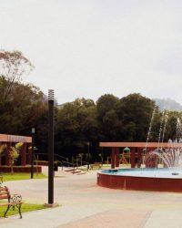 Boa Vista do Sul - RS